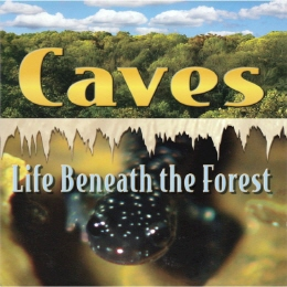 DVD - Caves: Life Beneath the Forest